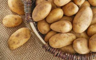 Как хранить картошку на балконе зимой: секреты