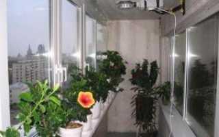 Зимний сад дома, как построить зимний сад своими руками