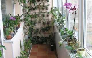 Теплое остекление балконов и лоджий: преимущества