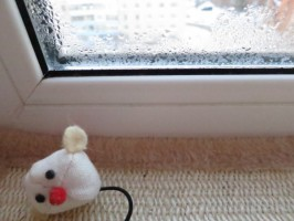 Окна Montblanc потеют или нет?
