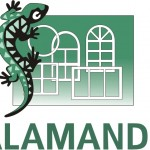Компания Salamander