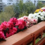 Правила безопасности на балконе