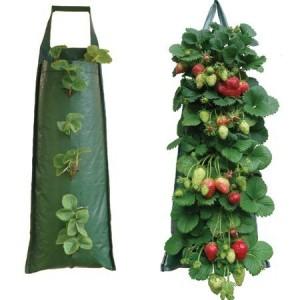 мешки для выращивания